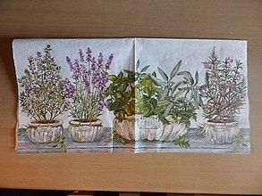 Papier - bylinky v kvetináčoch - 5563433_