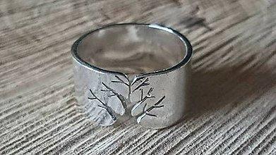 Prstene - Kúsok prírody - 5594110_
