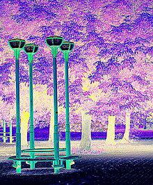Grafika - Osvetlenie v parku - 5665731_