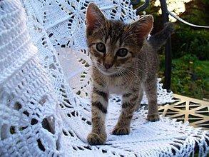 Úžitkový textil - Letozimná deka pre anjelika - 5672676_