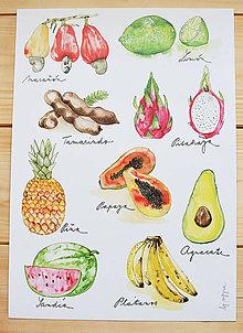 Obrázky - Ovocie Strednej Ameriky - 5717732_