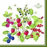 - ovocie - 5736277_