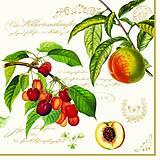 - ovocie - 5736280_