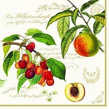 Papier - ovocie - 5736280_