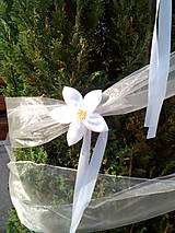 Biele kvety na výzdobu