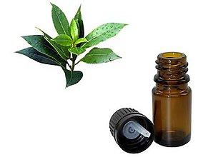 Suroviny - Čajovníkový olej (Tea Tree Oil) 10 ml - 5756004_