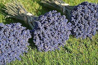 Dekorácie - Levanduľa-levanduľová kytička - 5762053_