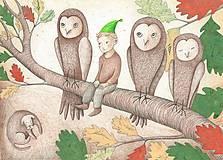 - Matouškův lesní příběh - 5841366_