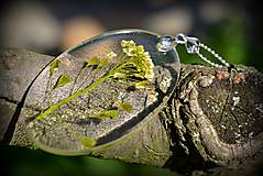 Náhrdelníky - Náhrdelník Pásla húsky pásla...(1812 A) - 5840048_