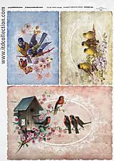 Papier - ryžový papier vtáčiky - 5863174_