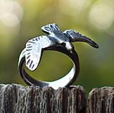 Prstene - Roztiahni krídla - 5868897_