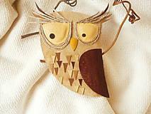 - Brošňa kožená, sova hôrna 2 - 5872563_