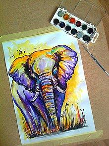 Obrazy - Elephant A3 - 5887589_
