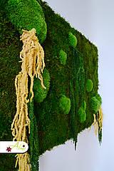 Obrázky - Živý obraz zo stabilizovaného machu  - 5911930_