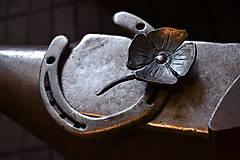 Dekorácie - Podkovička so štvorlístkom - 5915278_