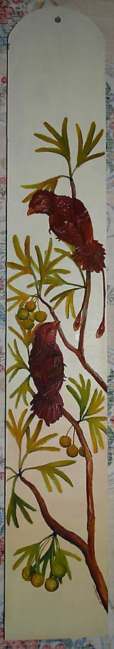 Obrazy - Confuciusornis sanctus - 5928834_