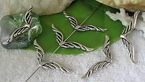 - Korálka veľké krídielká - 5956571_