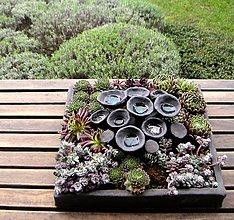 Socha - kvetináč ako obraz - 5983678_
