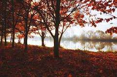 Obrazy - JESENNÉ RÁNO fotoplátno 70x50 cm - 6011769_