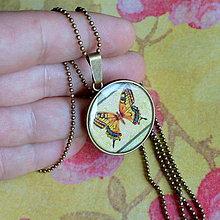 Náhrdelníky - Papilio machaon - náhrdelník průměr 25 mm - 6058108_