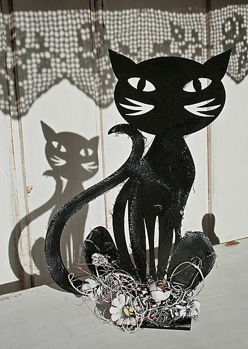 Čierna mačička DVD