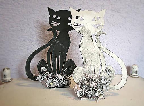 Pekná čierna mačička fotky