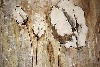 Obrazy - kvety velikánske - 6084023_