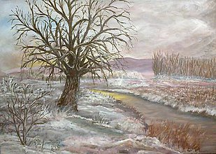 Obrazy - blíži sa snehová búrka - 6152106_