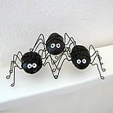 Iné - pavúčik pre šťastie - 6171618_