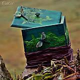 Nádoby - Vážky v machu - krabička na drobnosti - 6196682_