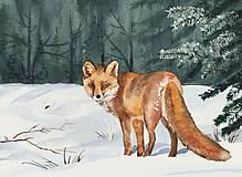 Obrazy - Líška - akvarel - 6210453_