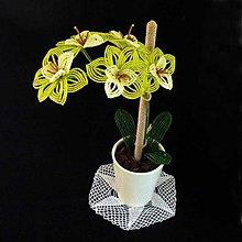 Dekorácie - Orchidejka...žlutozelená - 6268630_