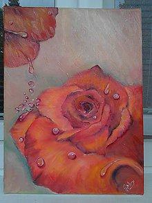 Obrazy - orosená ruža - 6273859_