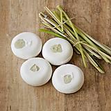Drogéria - Tea tree & lemongras - šampúch® proti lupinám 30g - 6278193_