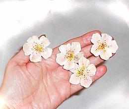 Ozdoby do vlasov - kvetinové veselosti-sponky - 6282032_