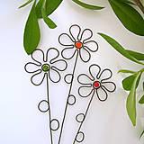 zápich kvet malý