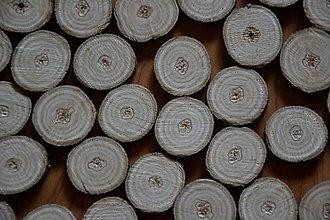 Polotovary - Orechové plátky prúžkované s očkom 2,5 - 3 cm - 6334135_