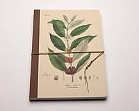 Zápisník - Káva Kávovník