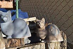 """Socha - Mačka   """"Na priedomí, na jar"""" .... . Set. - 6364564_"""