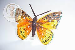 Iný materiál - Motýľ s klipsom - 6396588_