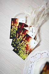 Papiernictvo - Visačky Snívame... - 6425585_