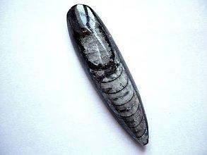 Minerály - Orthoceras č.18 - 58 mm - 6426792_