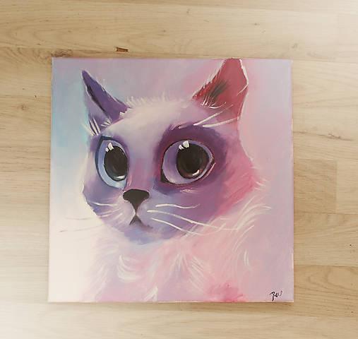 obraz pekná mačička Gay učiteľ sex videá