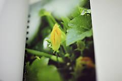 Papiernictvo - Na recepty (čo dom a záhrada dala) - 6452038_