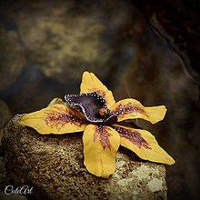"Dekorácie - Orchidea ""Vanilla Sky"" - sada 3 dekoračných kvetov - 6452553_"
