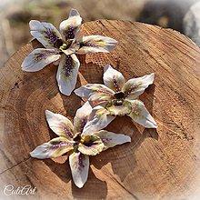 Dekorácie - Orchidea