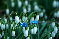 Náušnice - Parníčci modří - 6457488_