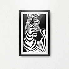 Grafika - Zebra - 6457385_