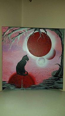 Obrazy - Black cat I - 6462513_