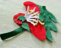 Hračky - Časti kvetu - 6467960_